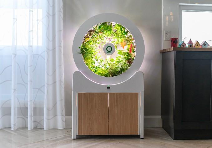 Tham khảo ngay cỗ máy này nếu bạn đang ở chung cư nhưng vẫn muốn ăn rau sạch tự trồng - Ảnh 1.
