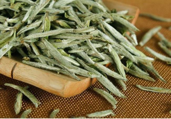 Uống trà trắng đem lại quá nhiều công dụng tuyệt vời cho sức khỏe!