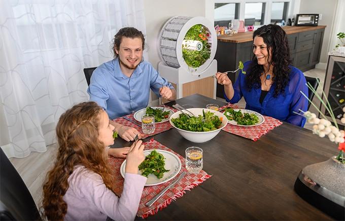 Tham khảo ngay cỗ máy này nếu bạn đang ở chung cư nhưng vẫn muốn ăn rau sạch tự trồng - Ảnh 10.