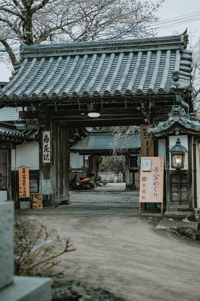 Quên Tokyo hay Kyoto đi, đây mới là nơi có nhiều hoa anh đào nhất Nhật Bản này! - Ảnh 3.