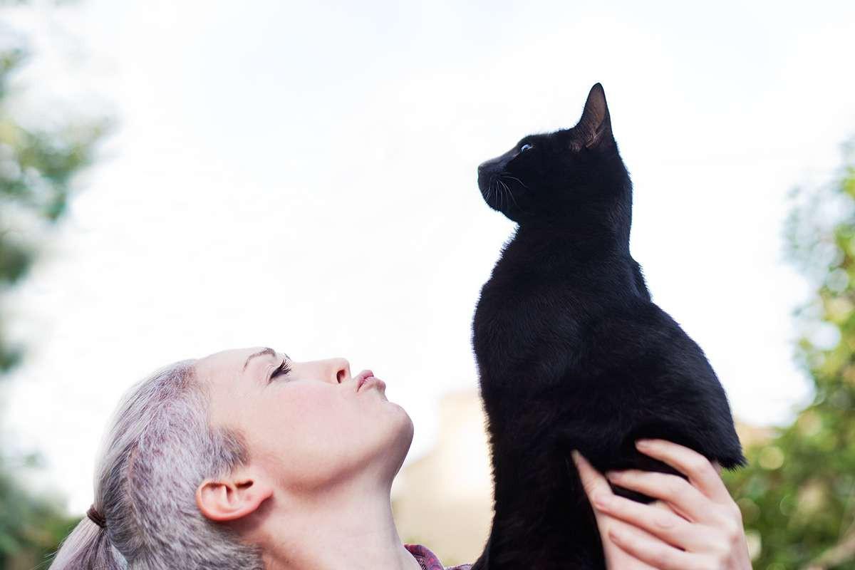 Khoa học xác nhận: Lũ mèo thực sự biết tên của chúng nó, chẳng qua là giả điếc thôi - Ảnh 2.