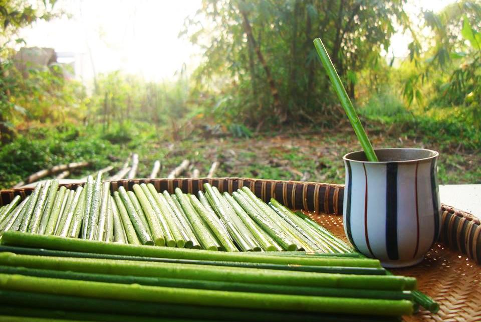 Thầy giáo bỏ nghề, về vườn sản xuất ống hút bằng cỏ, thay thế sản phẩm nguy hại môi trường - Ảnh 4.