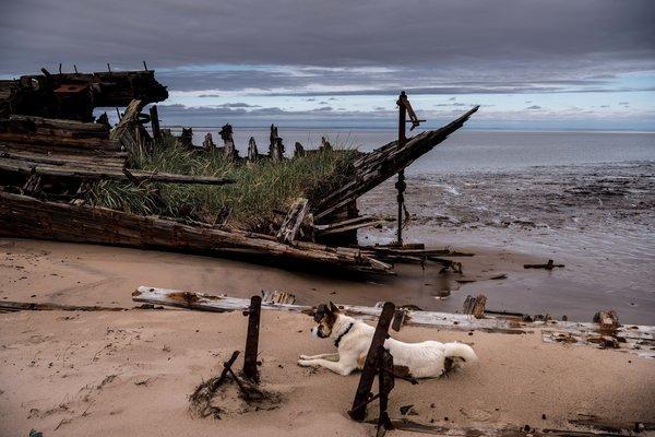 Khám phá ngôi làng Nga biến mất mỗi khi gió to, người dân không ai dám đóng cửa vào ban đêm - Ảnh 11.
