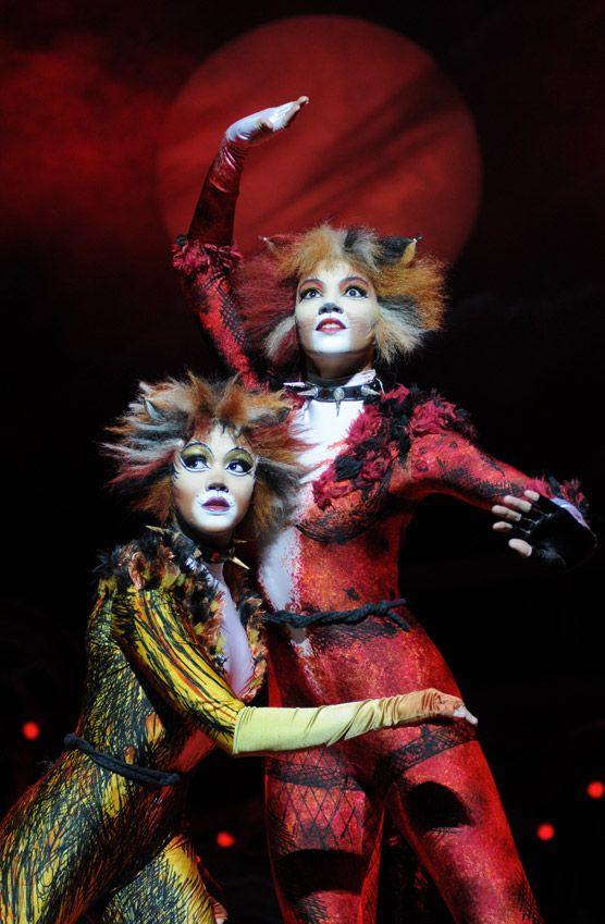Vai diễn chính đầu tay chọn ngay vai hóa thành mèo, Taylor Swift quả là fan cuồng hoàng thượng chính hiệu - Ảnh 5.