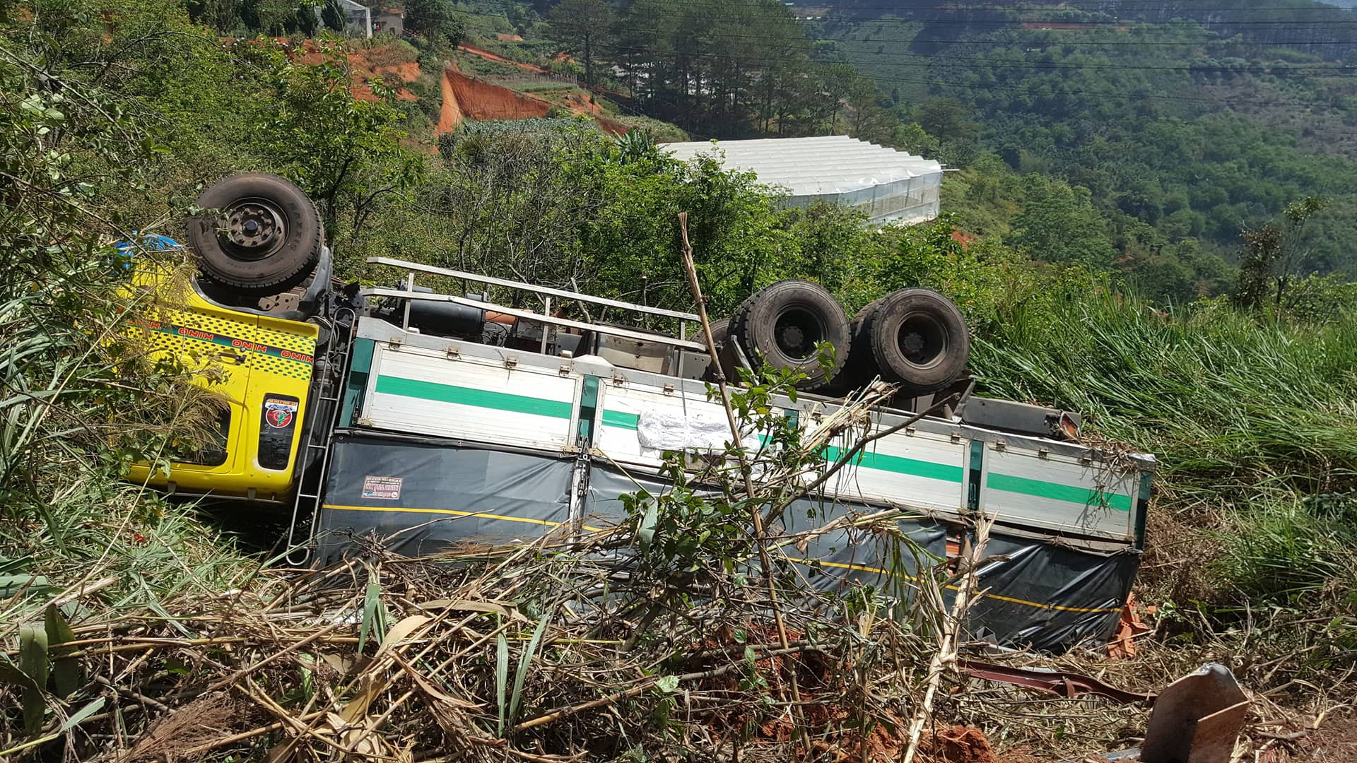 Đà Lạt: Người đi đường rớt tim khi chiếc xe tải đang leo đèo Mimosa thì bể nồi hơi, lao thẳng xuống vực - Ảnh 2.