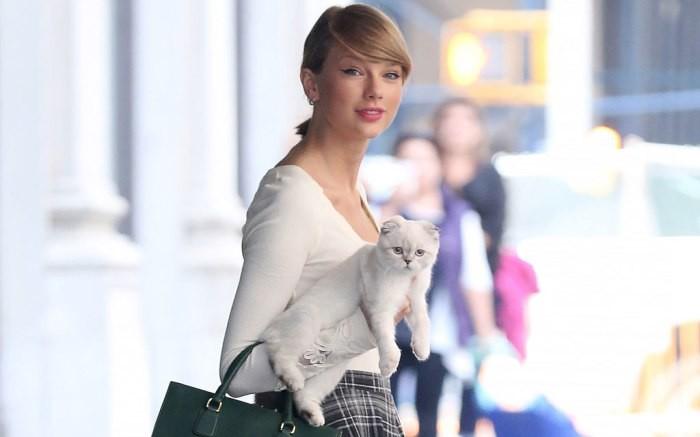 Vai diễn chính đầu tay chọn ngay vai hóa thành mèo, Taylor Swift quả là fan cuồng hoàng thượng chính hiệu - Ảnh 1.