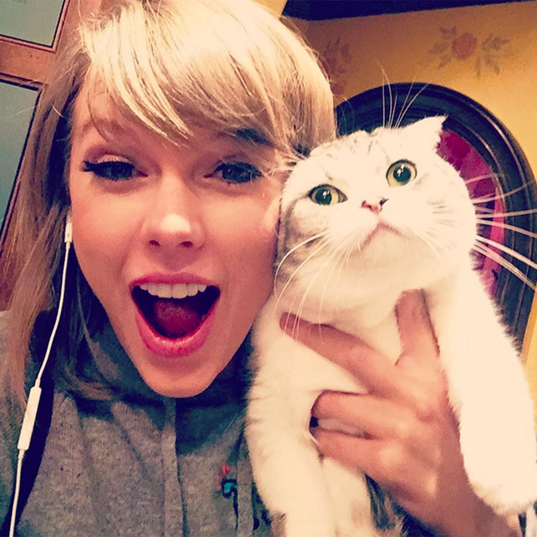 Vai diễn chính đầu tay chọn ngay vai hóa thành mèo, Taylor Swift quả là fan cuồng hoàng thượng chính hiệu - Ảnh 2.