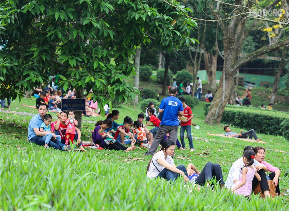 Sinh viên tình nguyện thâu đêm nhặt rác quanh khu vực Đền Hùng - Ảnh 3.