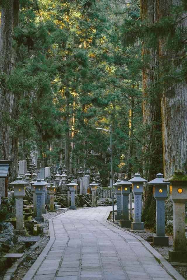 Khám phá Nghĩa trang Okunoin: Nơi được mệnh danh thánh địa thiêng liêng nhất Nhật Bản, có 5000 chiếc lồng đèn không bao giờ tắt - Ảnh 1.