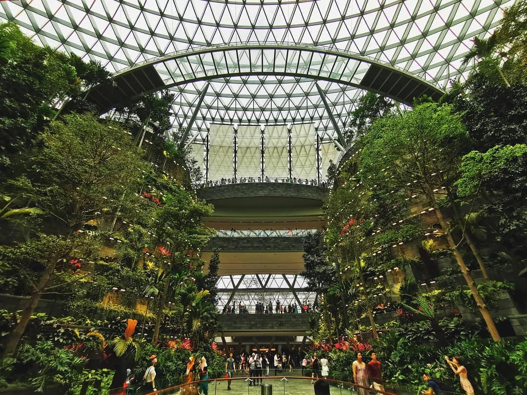 Vừa mới khai trương, khu phức hợp Jewel tại sân bay Changi - Singapore đã chiếm trọn spotlight trên MXH - Ảnh 2.