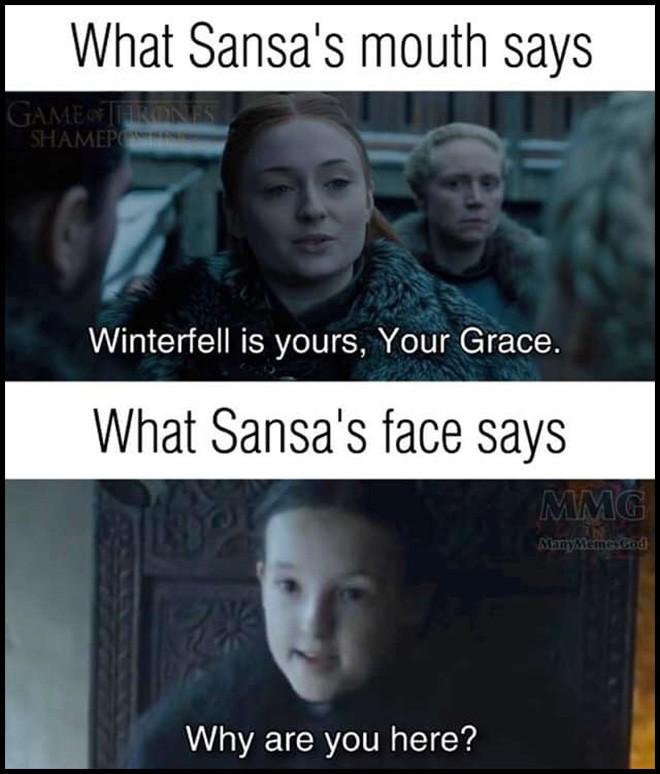 Game of Thrones 8: Mới tập 1, Mẹ Rồng và Sansa đã lườm nhau toét cả mắt - Ảnh 7.