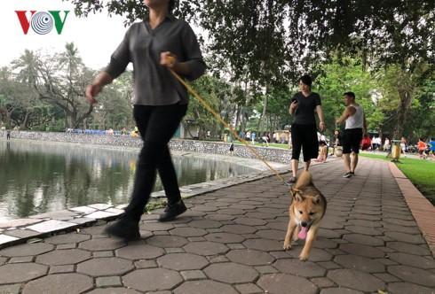 Kinh hãi chó không rọ mõm chạy rông trong công viên Thống Nhất - Ảnh 7.