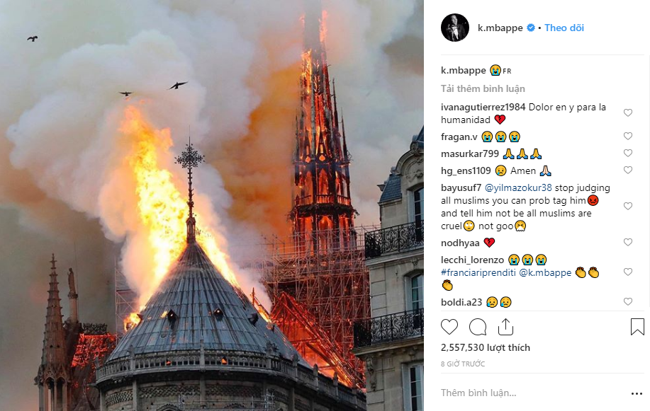 Nghệ sĩ thế giới bàng hoàng trước vụ Nhà thờ Đức Bà Paris bốc cháy: Cảm thấy bất lực khi chứng kiến cảnh tượng này - Ảnh 7.