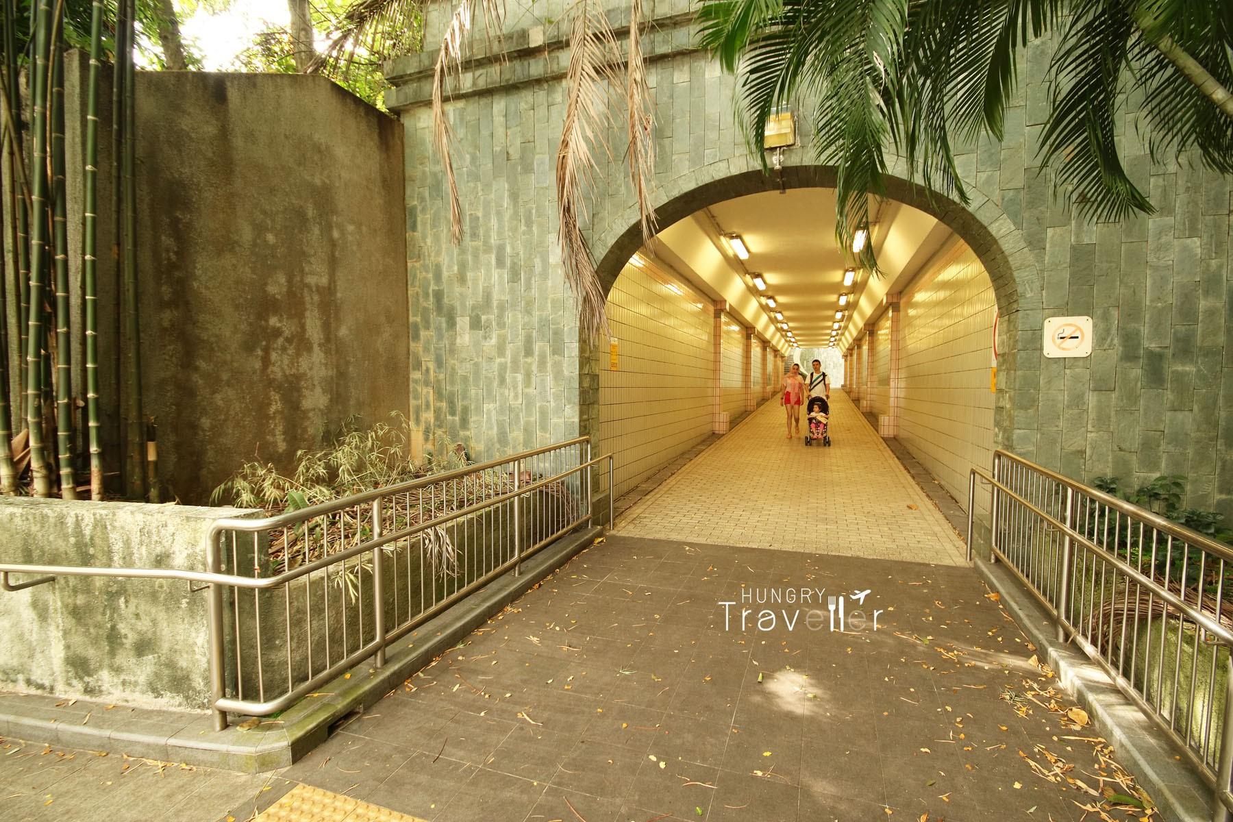 Thêm một lần nữa MXH được dịp trầm trồ với địa điểm check-in cực hot này tại Singapore - Ảnh 4.