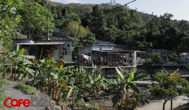 Người đàn ông Hong Kong bỏ phố về quê để sống xanh: Tự nhóm lửa, trồng rau, cả gia đình không dùng giấy vệ sinh suốt hơn 10 năm trời - Ảnh 4.