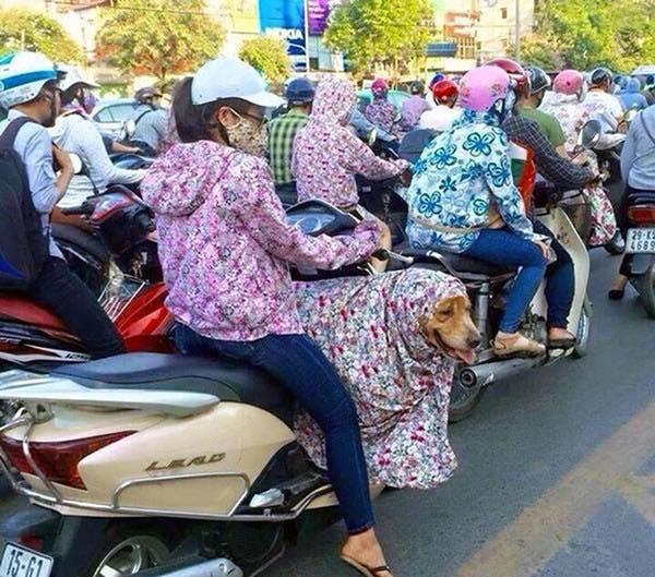 Style Ninja đã được nâng cấp lên một tầm cao mới trong những ngày Sài Gòn nắng nóng đến suy nhược - Ảnh 11.