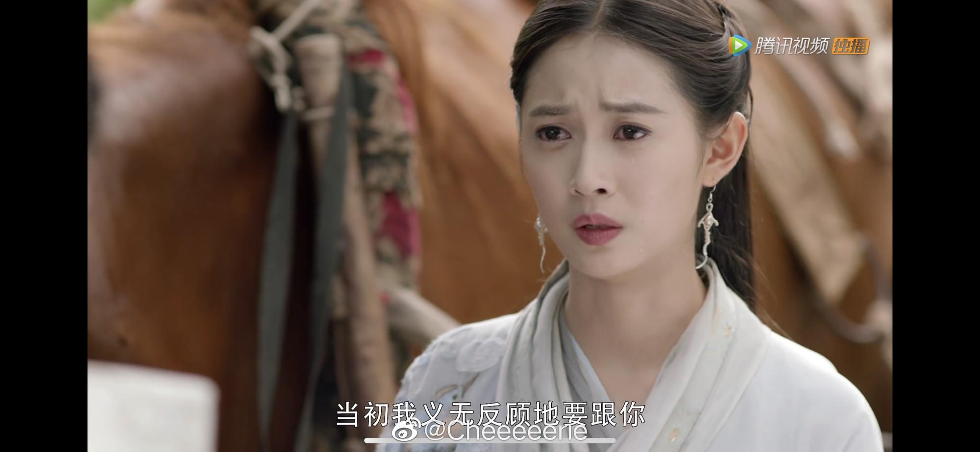 Thảm hoạ tập cuối Tân Ỷ Thiên Đồ Long Ký, netizen phẫn nộ: Biên kịch là mẹ đẻ Chu Chỉ Nhược đúng không? - Ảnh 12.