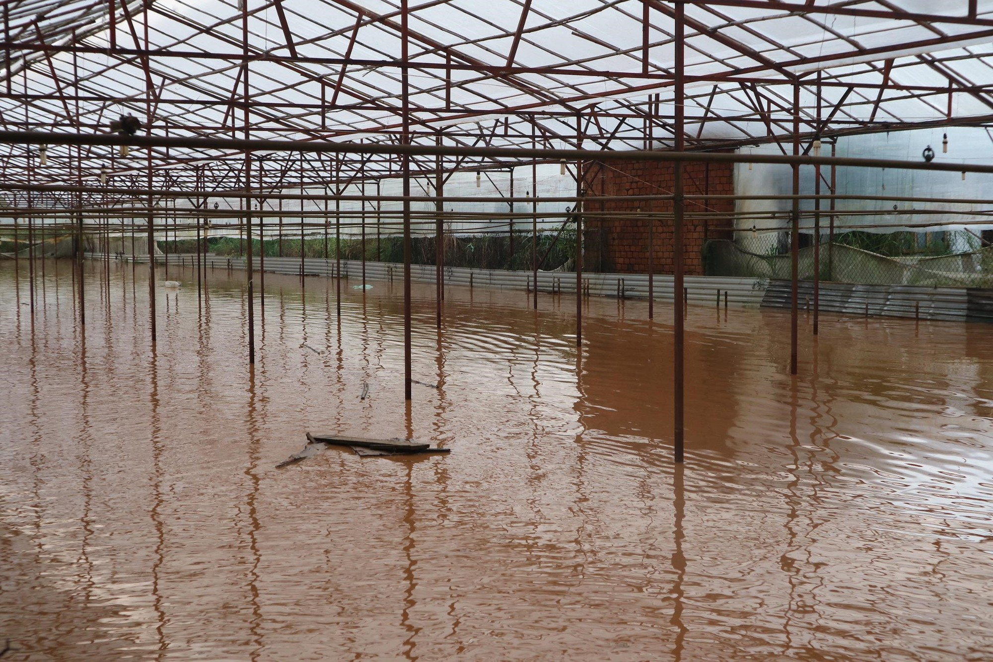 Đà Lạt mưa lớn kéo dài, nhiều nơi ngập nặng, người dân cuống cuồng lội nước - Ảnh 5.