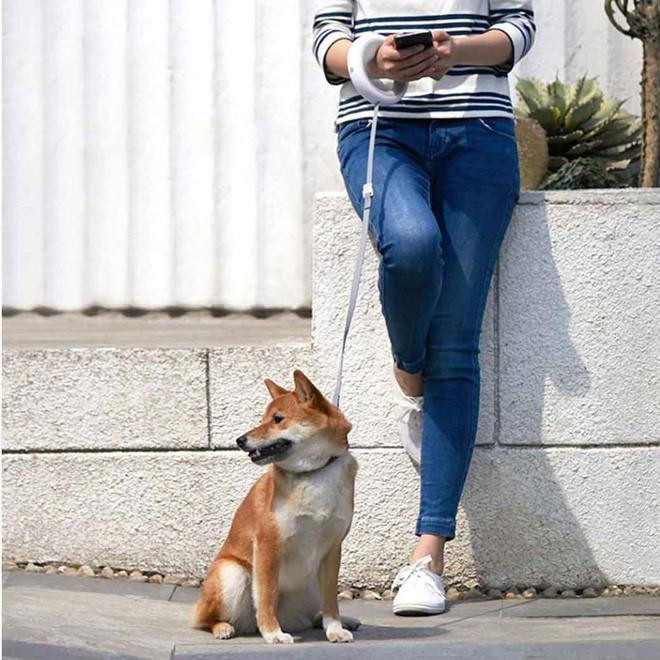 Xiaomi ra mắt dây dắt chó thông minh, tích hợp đèn pin, giá khoảng 1 triệu - Ảnh 5.