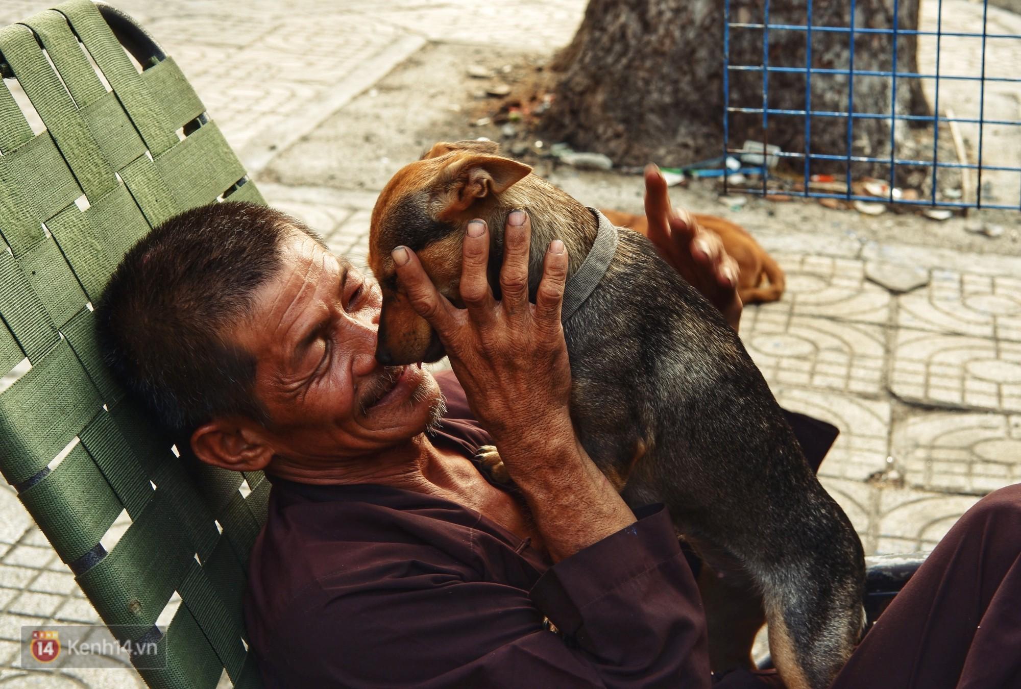 Tấm bảng Chó là bạn, không phải thứ ăn của người đàn ông 20 năm bầu bạn với những chú chó ngoài đường phố Sài Gòn - Ảnh 8.