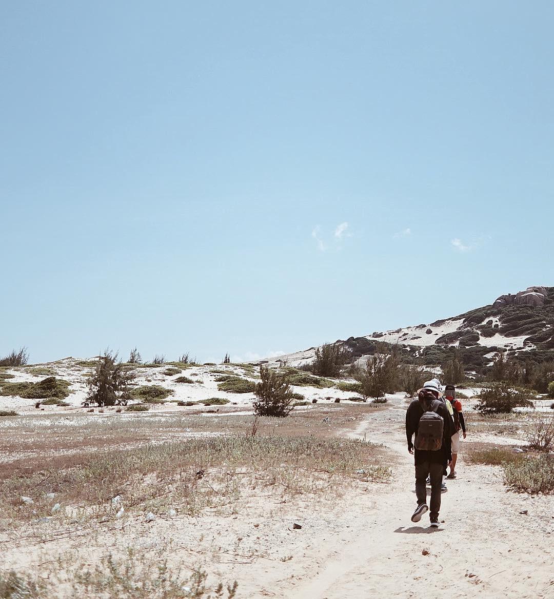 """Tưởng đâu Sahara, ngay tại Việt Nam cũng có 7 """"tiểu sa mạc"""" siêu đẹp tha hồ cho bạn hóa thành du mục - Ảnh 32."""