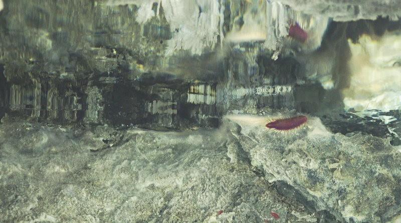 Tháp hồng soi bóng hồ gương dưới đáy biển: Kỳ quan tuyệt đẹp mới được tìm ra tại California - Ảnh 7.