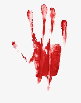 Hung thủ sát hại hai mẹ con từ 2 thập kỷ trước bị bắt giữ nhờ dấu vết lòng bàn tay dính máu ở hiện trường - Ảnh 2.