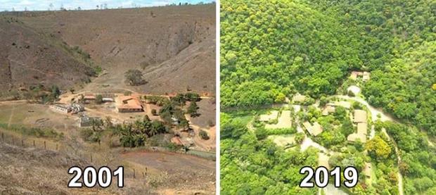 Vợ chồng nhiếp ảnh gia Brazil trồng 2 triệu cây xanh trong 20 năm để hồi sinh khu rừng bị tàn phá, hàng trăm loài động vật lũ lượt kéo về - Ảnh 10.