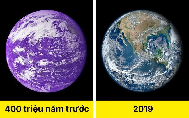Trái Đất màu tím, cát biết hát và 11 sự thật khác lạ về thế giới khiến ai cũng há hốc mồm - Ảnh 8.