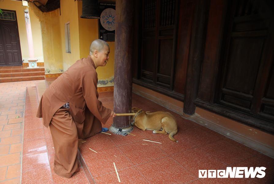 Sự thật bất ngờ về clip sư thầy chùa Sùng Quang đánh đập trẻ em tại chùa - Ảnh 2.