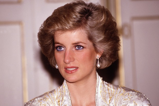 Bác sĩ pháp y tiết lộ bí mật về cái chết của công nương Diana: Do vết thương nhỏ nằm ở vị trí hiểm hóc - Ảnh 3.
