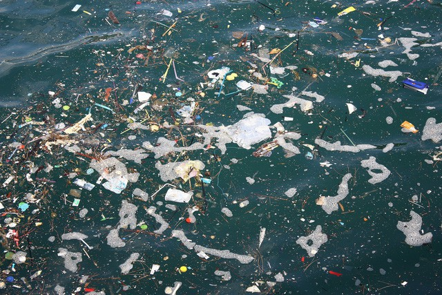 Châu Âu thông qua luật cấm sản phẩm nhựa sử dụng một lần trước năm 2021 - Ảnh 2.