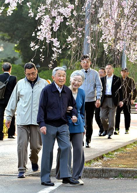 Vua và hoàng hậu Nhật Bản gây bất ngờ khi tản bộ bên ngoài cung điện ngắm hoa anh đào nở nhưng cách ông thể hiện tình cảm với bạn đời 60 năm mới khiến người ta ngưỡng mộ - Ảnh 3.