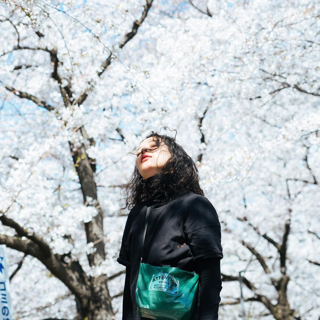 Không Nhật Bản thì Hàn Quốc, cảm giác như cả thế giới đều đi ngắm hoa anh đào hết rồi! - Ảnh 19.