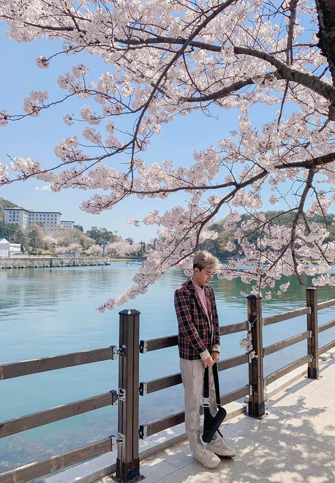 Không Nhật Bản thì Hàn Quốc, cảm giác như cả thế giới đều đi ngắm hoa anh đào hết rồi! - Ảnh 24.