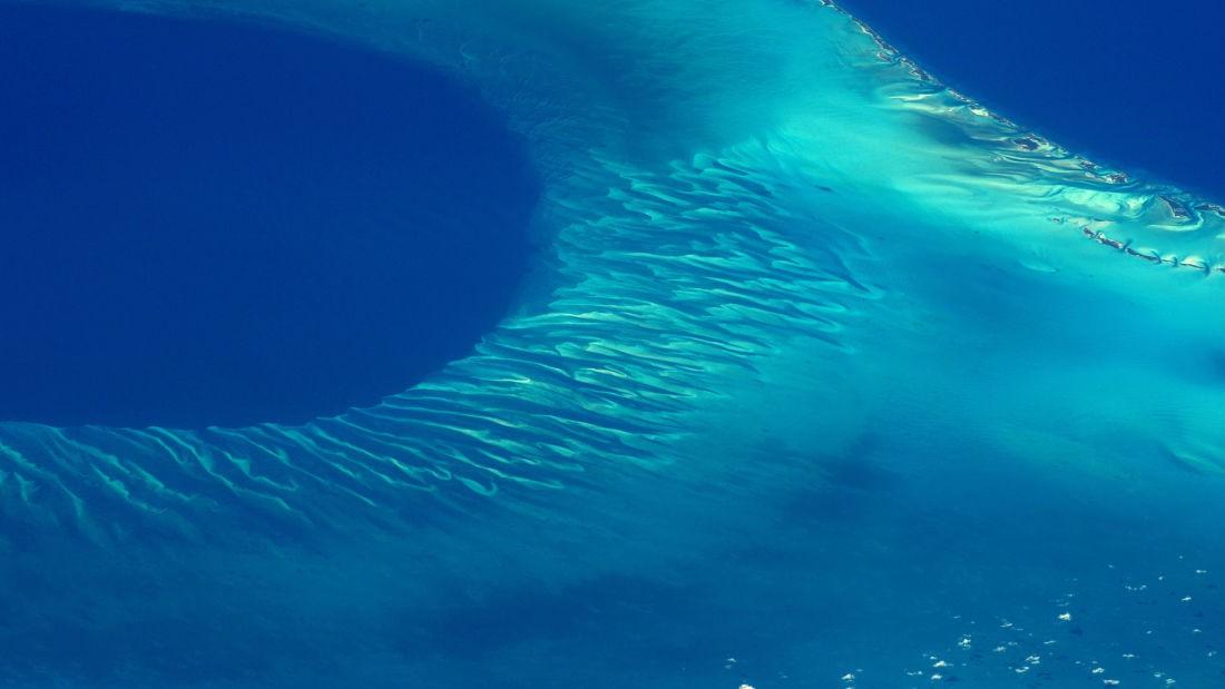 Có một thứ gì đó rất khổng lồ đang... huýt sáo dưới biển Caribbean mà khoa học đang đau đầu tìm hiểu - Ảnh 1.
