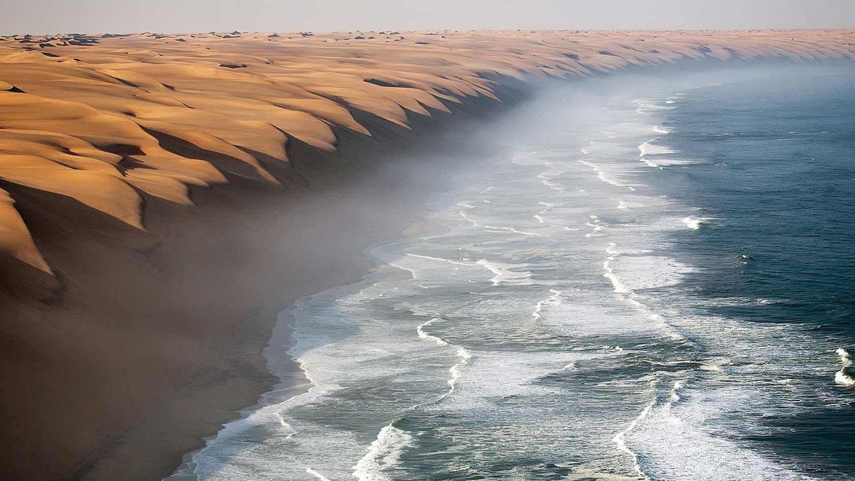 Chiến thuật sinh tồn tuyệt vời của loài bọ sống tại một trong những sa mạc khô nhất thế giới - Ảnh 3.