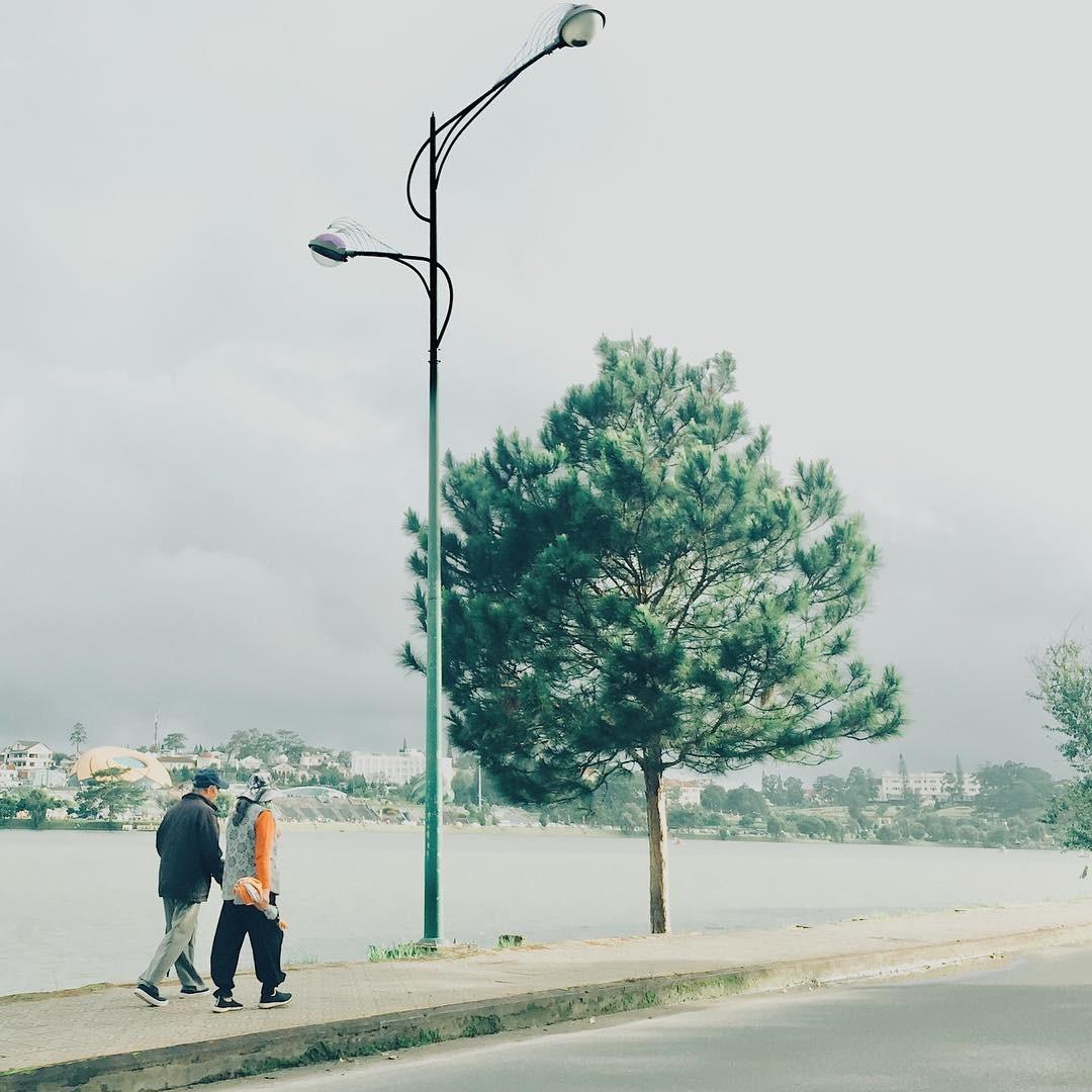 Đà Lạt và những sự thật dễ thương không phải ai cũng biết, đọc xong bạn sẽ càng thêm yêu thành phố xinh đẹp này! - Ảnh 17.