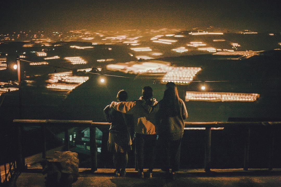 Đà Lạt và những sự thật dễ thương không phải ai cũng biết, đọc xong bạn sẽ càng thêm yêu thành phố xinh đẹp này! - Ảnh 4.