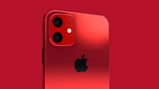 iPhone 2019 sắc nét như dao cạo qua ảnh dựng mới nhất, bóng lộn sang chảnh miễn chê - Ảnh 14.