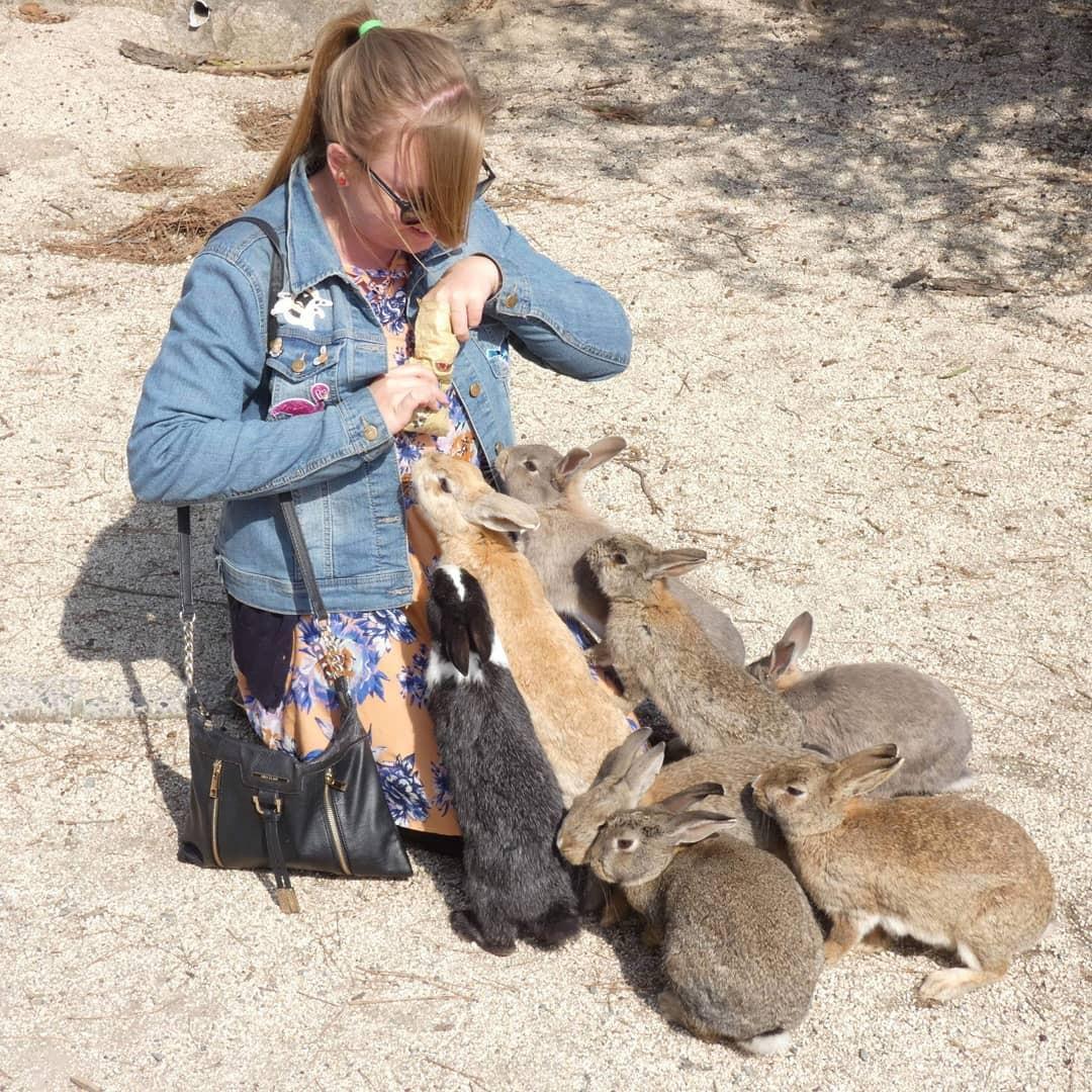 Góc đáng yêu: Hòn đảo thỏ nhiều hơn người ở Nhật Bản, nhìn thôi cũng đã muốn chết chìm vì sự cute - Ảnh 6.