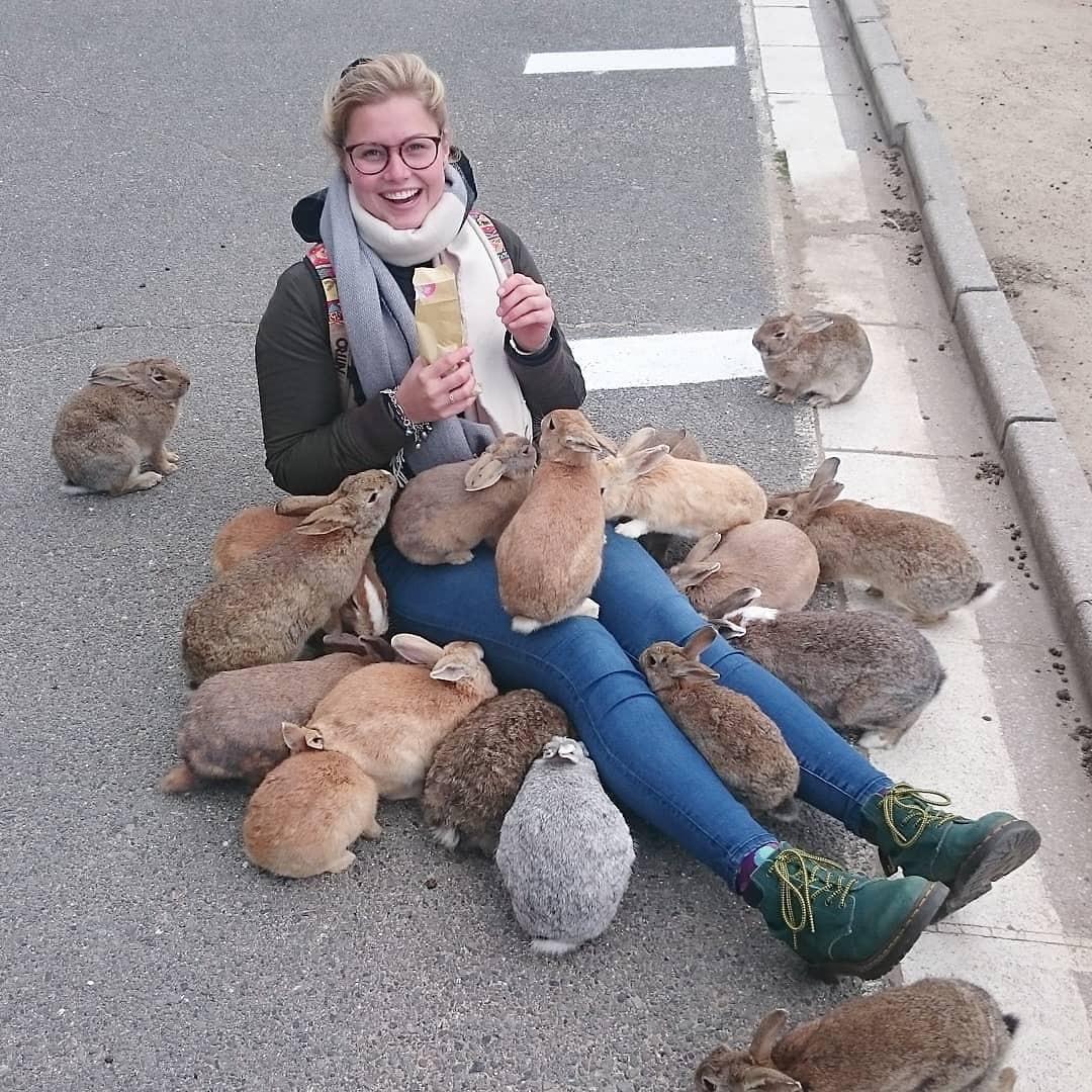Góc đáng yêu: Hòn đảo thỏ nhiều hơn người ở Nhật Bản, nhìn thôi cũng đã muốn chết chìm vì sự cute - Ảnh 7.