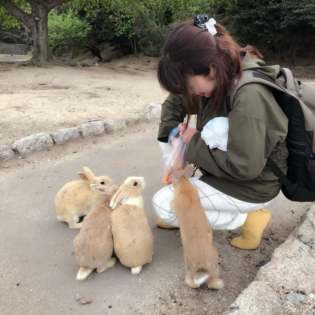 Góc đáng yêu: Hòn đảo thỏ nhiều hơn người ở Nhật Bản, nhìn thôi cũng đã muốn chết chìm vì sự cute - Ảnh 11.