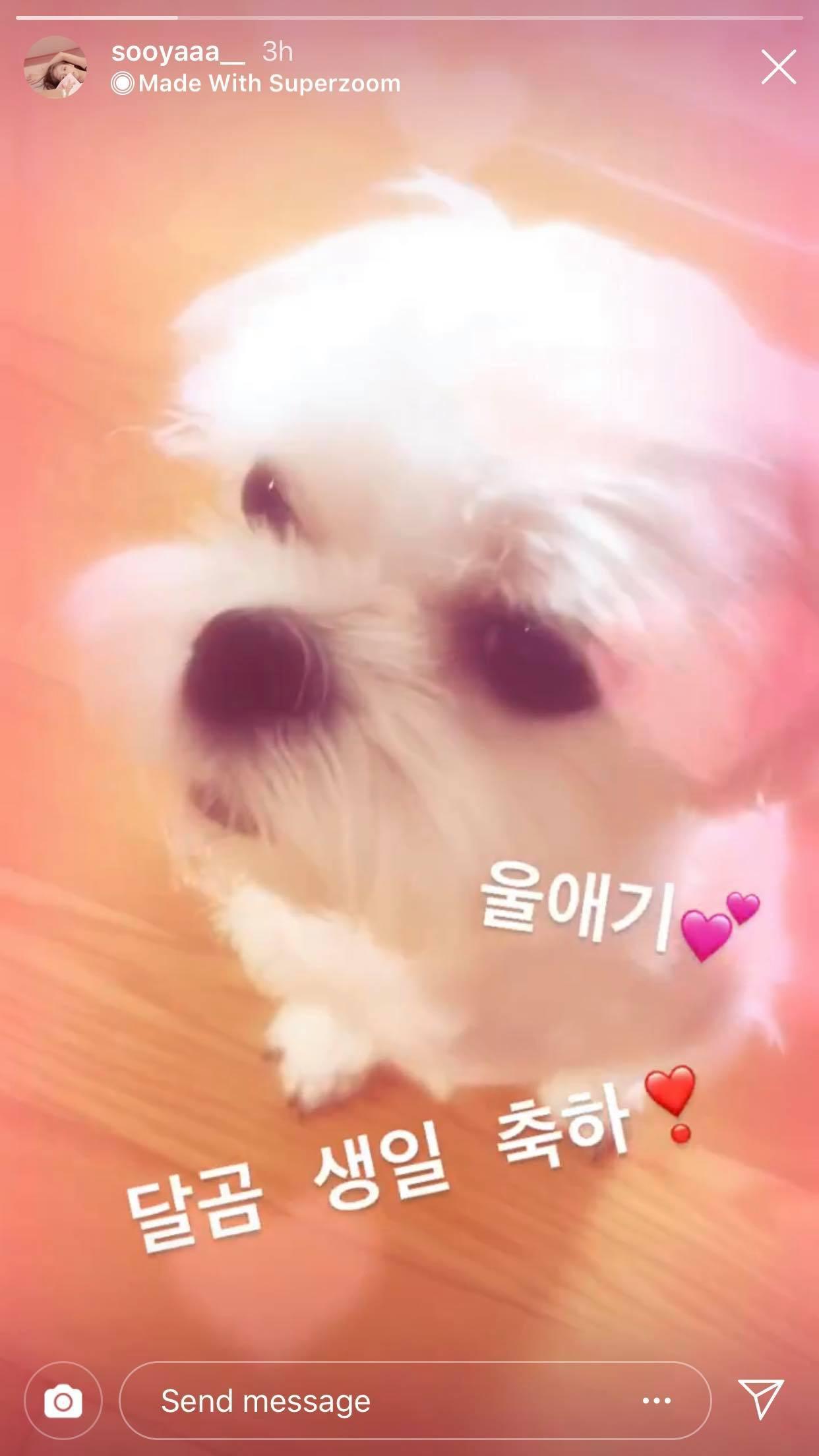Nhân vật khiến fan BLACKPINK ghen tỵ nhất hôm nay: Được Jennie cưng nựng, ôm ấp, spam toàn hình ảnh yêu thương - Ảnh 6.