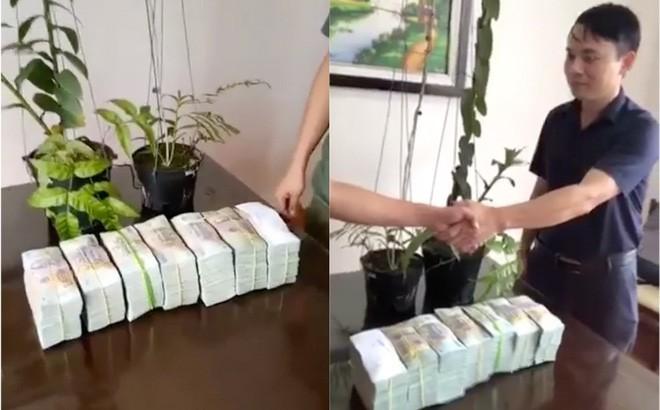 Chủ nhân mua cây lan 3,5 tỷ đồng gây xôn xao tiết lộ mục đích mua - Ảnh 1.