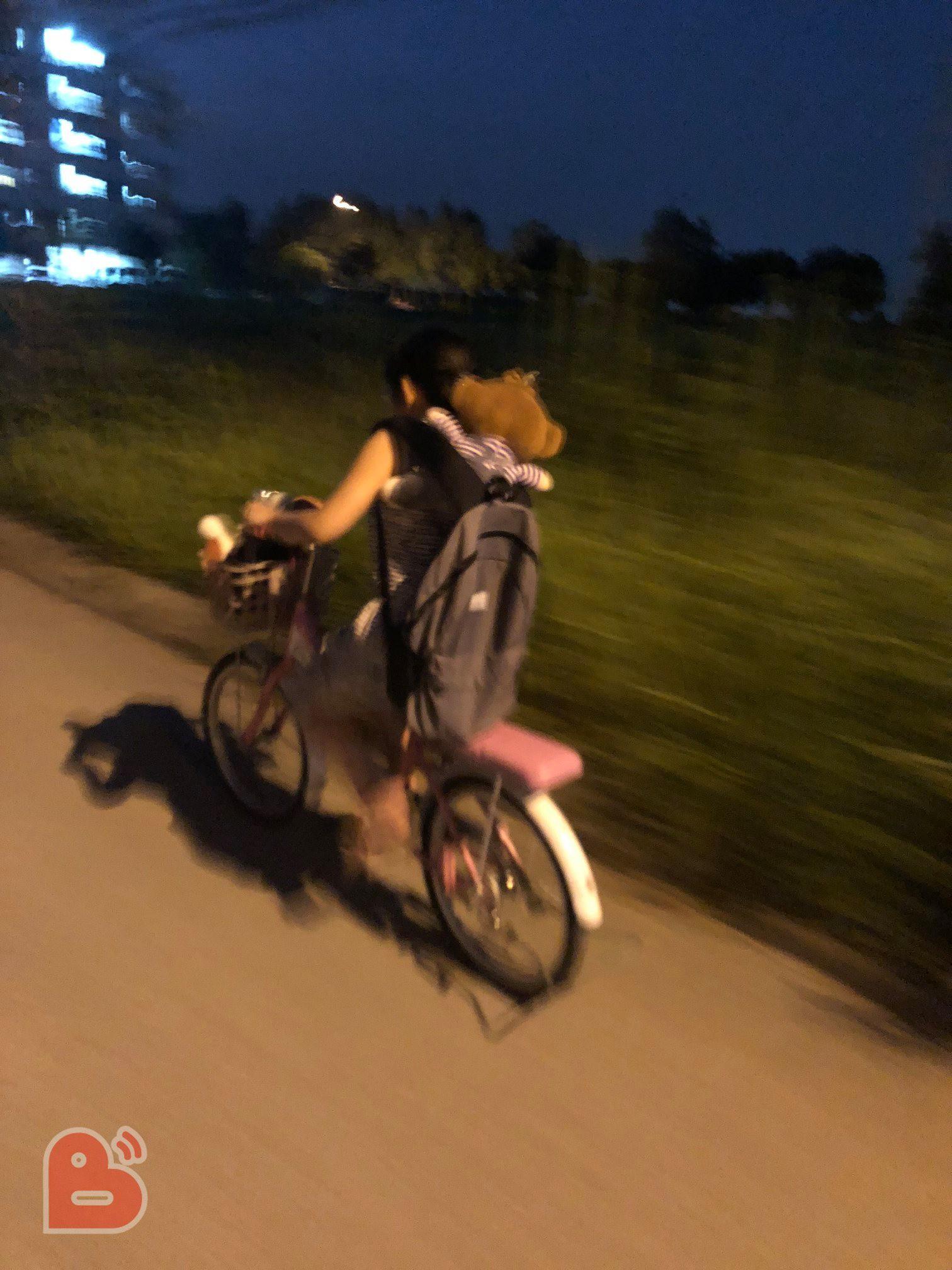 Anh trai đùa Bố mẹ nhặt em ở bãi rác, bé gái tưởng thật để lại tâm thư rồi lấy xe đạp bỏ nhà ra đi - Ảnh 1.