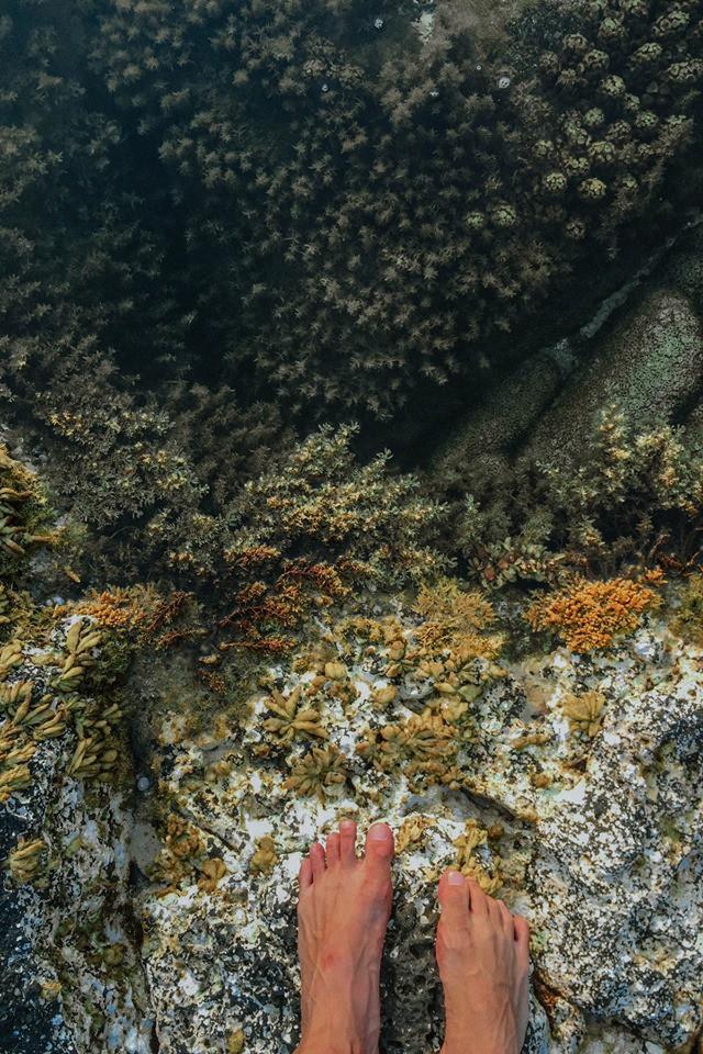 Cứ tưởng chụp ở nước ngoài, ai ngờ vùng biển trong vắt này lại nằm ngay ở Việt Nam mà lại còn rất dễ đi! - Ảnh 17.