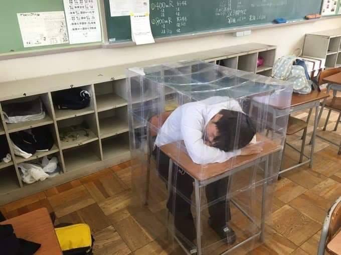 Đừng ngủ khi lũ bạn còn thức: Ngủ gật ở lớp, nam sinh mở mắt thấy mình đang nằm trong nhà kính - Ảnh 2.