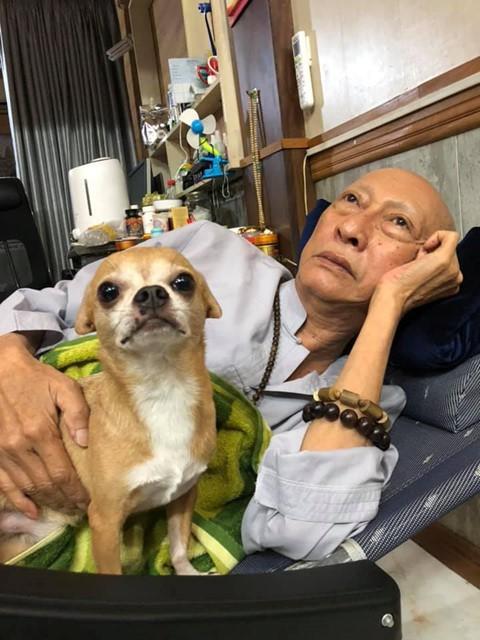 Chú chó Lucky được gia đình buộc tang trắng, quấn quýt bên linh cữu cố nghệ sĩ Lê Bình - Ảnh 4.