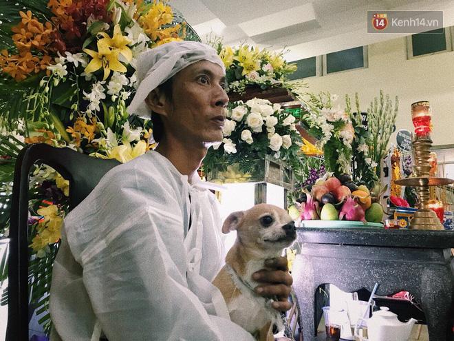 Chú chó Lucky được gia đình buộc tang trắng, quấn quýt bên linh cữu cố nghệ sĩ Lê Bình - Ảnh 2.
